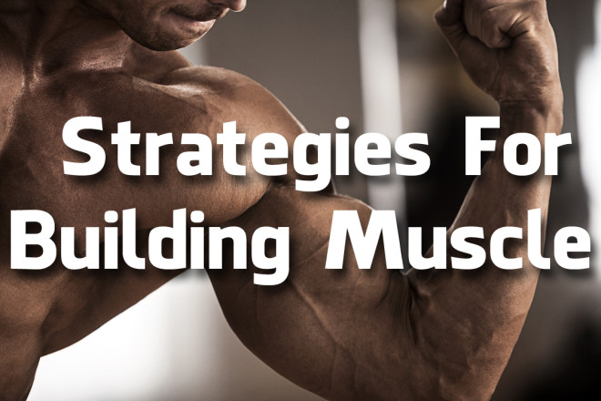 Strategies For Building Muscle