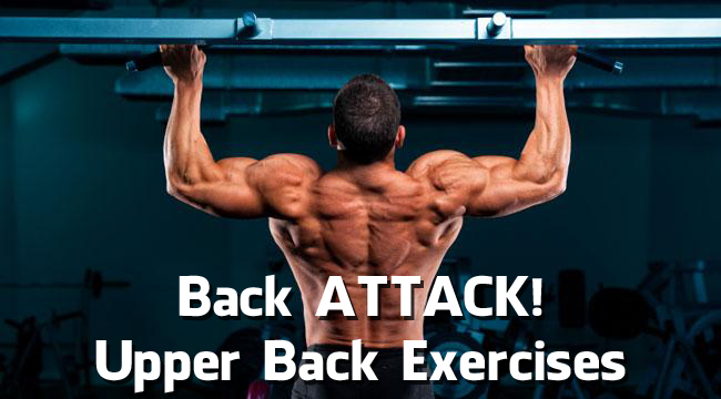 Back ATTACK! Upper Back Exercises (Video)