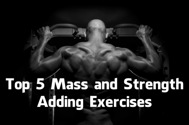 Top 5 Mass and Strength Adding Exercises (Video)